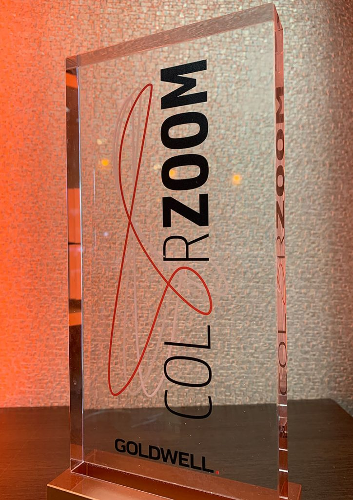Goldwell Colour Zoom Award